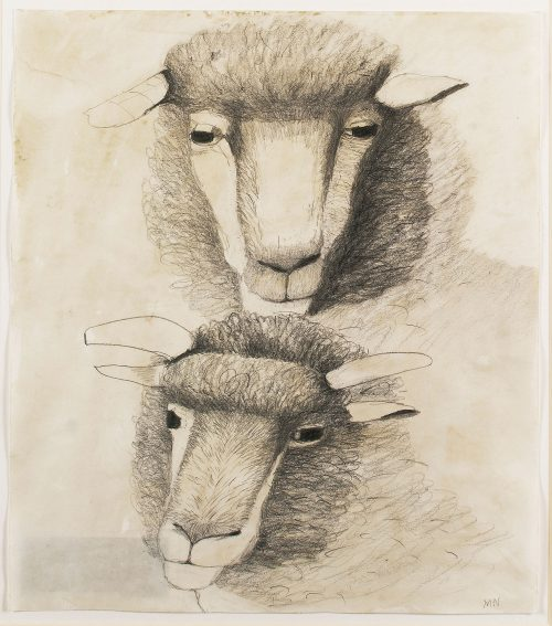 mary-newcomb-dorset-horned-polled-ram-and-young-ram
